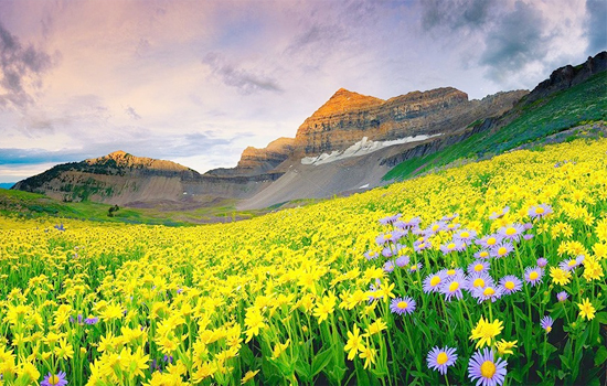 badrinath-with-valley-of-flower-package